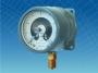 ДМ2010Сг, ДВ2010Сг, ДА2010Сг Манометр, вакуумметр и мановакуумметр показывающий сигнализирующий (диаметр корпуса 100 мм)
